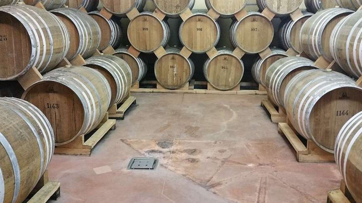Cognac, king of the evening at the Fontbedeau Cellar