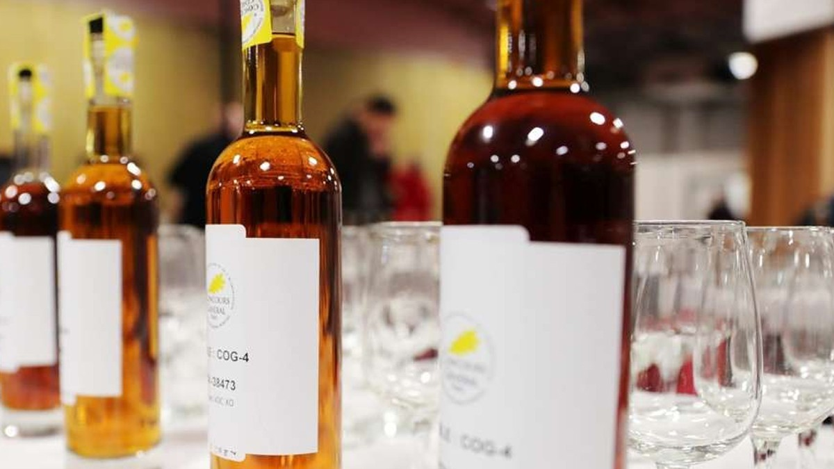 Charente-Maritime: products awarded at the Concours général agricole.